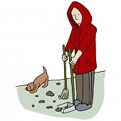 stock photo of pooping  - An image of man picking up dog poop - JPG