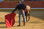 stock photo of bullfighting  - The bullfighter calls out the bull with the muleta during a bullfight in Badajoz Spain - JPG