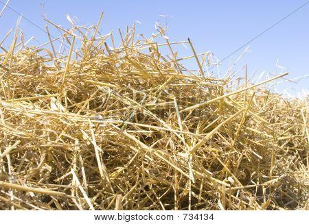 Row Of Straw