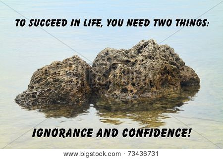 Rocks with reflection quote