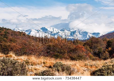 Autumn In Patagonia. Tierra Del Fuego,  Argentine Side