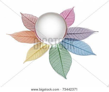 Blank crystal ball on skeleton leaves