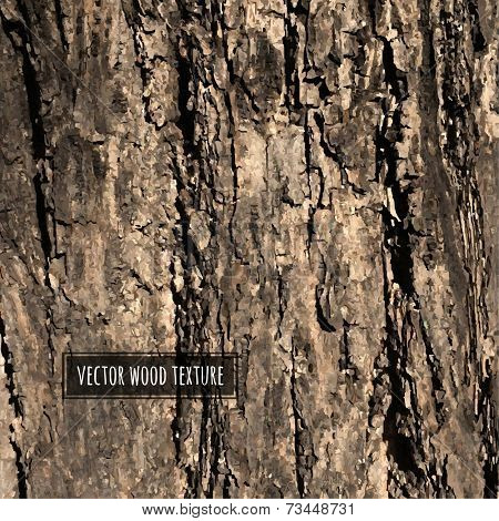 Vector Wood Texture, Vector Illustration