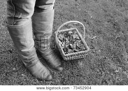 Woman Wearing Boots Standing With A Basket Of Fall Leaves