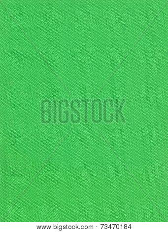 green rubber cells texture