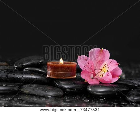 Beautiful orchid with candle on black stones background