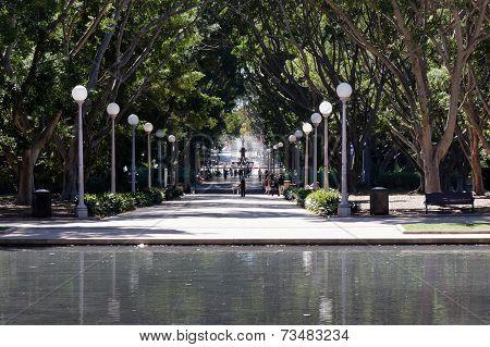 Hyde Park - Sydney Australia