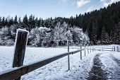 image of log fence  - a frosty rural footpath with a wooden fence covered in hoarfrost and some cabins in the woods - JPG
