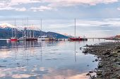 image of tierra  - Ushuaia Beagle Channel - JPG