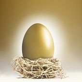 pic of nest-egg  - Big gold nest egg with a golden background - JPG