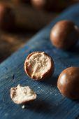 picture of malt  - Dark Chocolate Malted Milk Balls in a Bowl - JPG