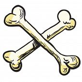image of skull cross bones  - crossed bones cartoon illustration - JPG
