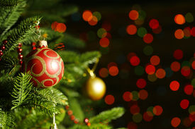 picture of fairy  - Decorated Christmas tree on  blurred - JPG