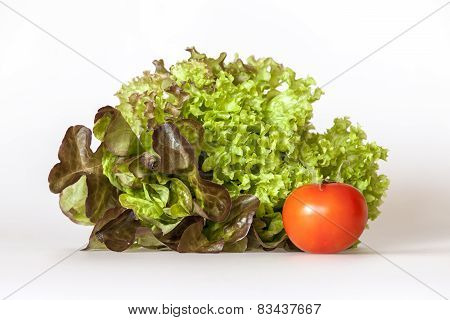 Bunch of lettuce leaves of different grades