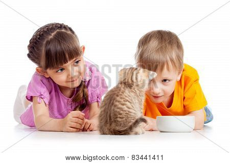 happy kid feeding kitten