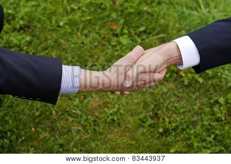 Handshake of two businessmen in suits