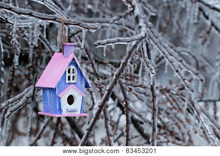 Wooden birdhouse hanging on ice enveloped tree branches