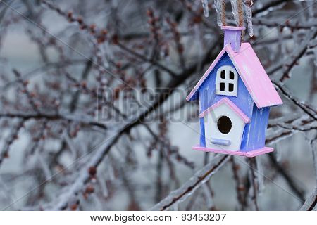 Wooden birdhouse hanging on ice covered tree branches