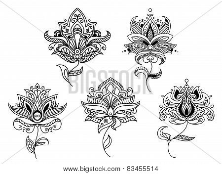 Outline paisley flowers and floral elements