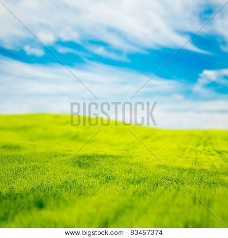 Tilt Shift Photo of Green Field at Spring