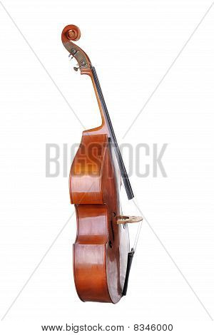 Images Of The Classical Contrabass.