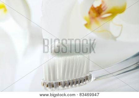 Toothbrush With Toothpaste On A White Table Against The Background Of Orchid Flowers