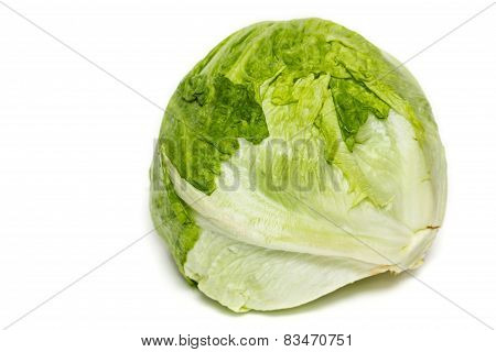 Salad Iceberg. Iceberg Lettuce Isolated On White
