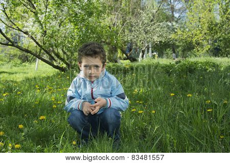 Spring Sitting On The Grass And Dandelions Cute Boy.