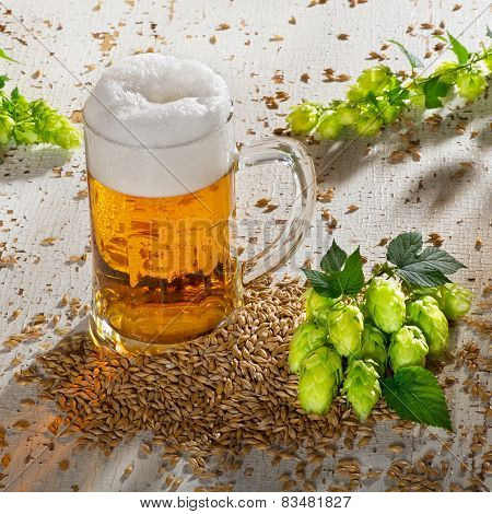 Beer Glass And Hops