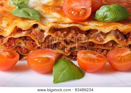 Lasagna With Fresh Basil And Cherry Tomatoes Macro