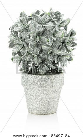 Artificial Silver Houseplant Isolated On The White Background