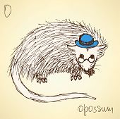 pic of possum  - Sketch fancy opposum in vintage style vector - JPG