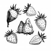 foto of strawberry  - Hand - JPG