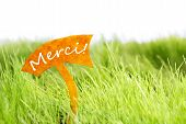 picture of thankful  - Label With French Text Merci Which Means Thank You On Sunny Green Grass For Spring Or Summer Feeling - JPG