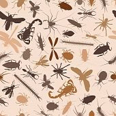 stock photo of mayfly  - Editable vector seamless tile of various insects and other invertebrates - JPG
