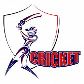 picture of cricket bat  - vector illustration of cricket player playing with bat - JPG