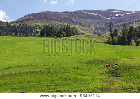 Landscape Of A Grassy Valley And Mountains With Trees
