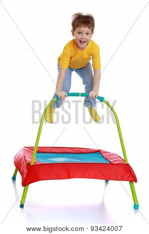 Laughing little boy jumping on a trampoline