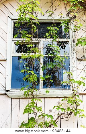Window Of Old Wooden Country House
