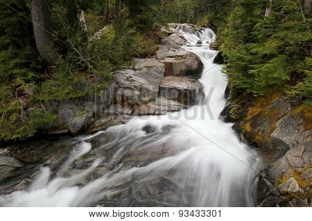 Paradise River at Mount Rainier National Park