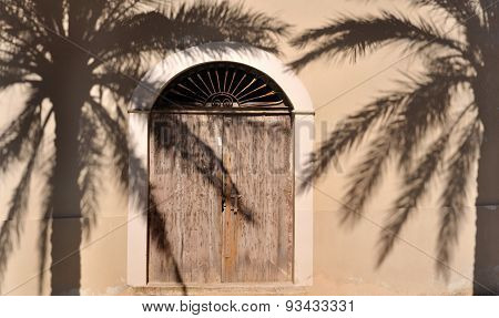 Wooden Door And Palm Tree Shadow