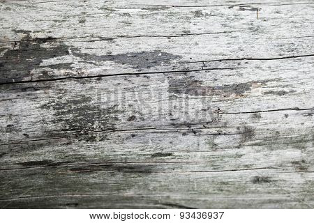 Wood Texture Background empty space
