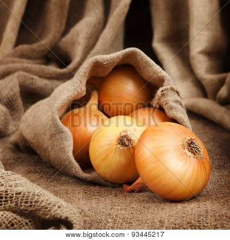 Onion Spill Out Of The Bag Of Coarse Cloth