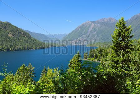 Lake Cushman Cove In Summer