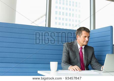 Mature businessman using laptop at desk