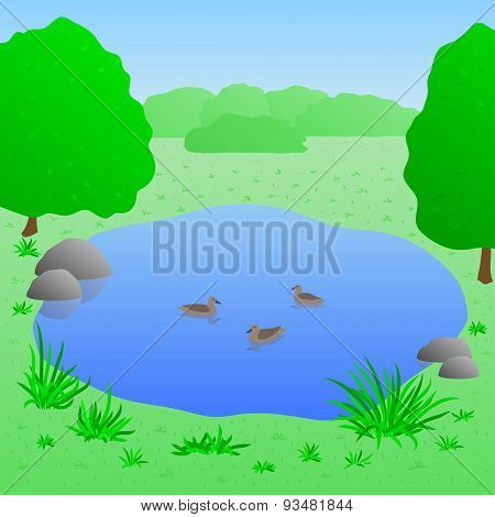 Lake with ducks, vector illustration