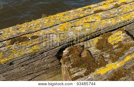 Weathered Oak Beams Of An Old Jetty