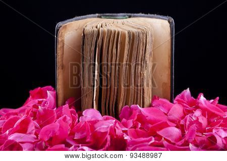 Old Book On Roses