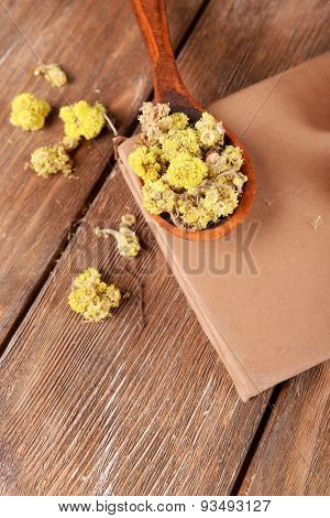 Old book with dry flowers on wooden background