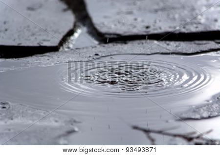 Rippled Puddle